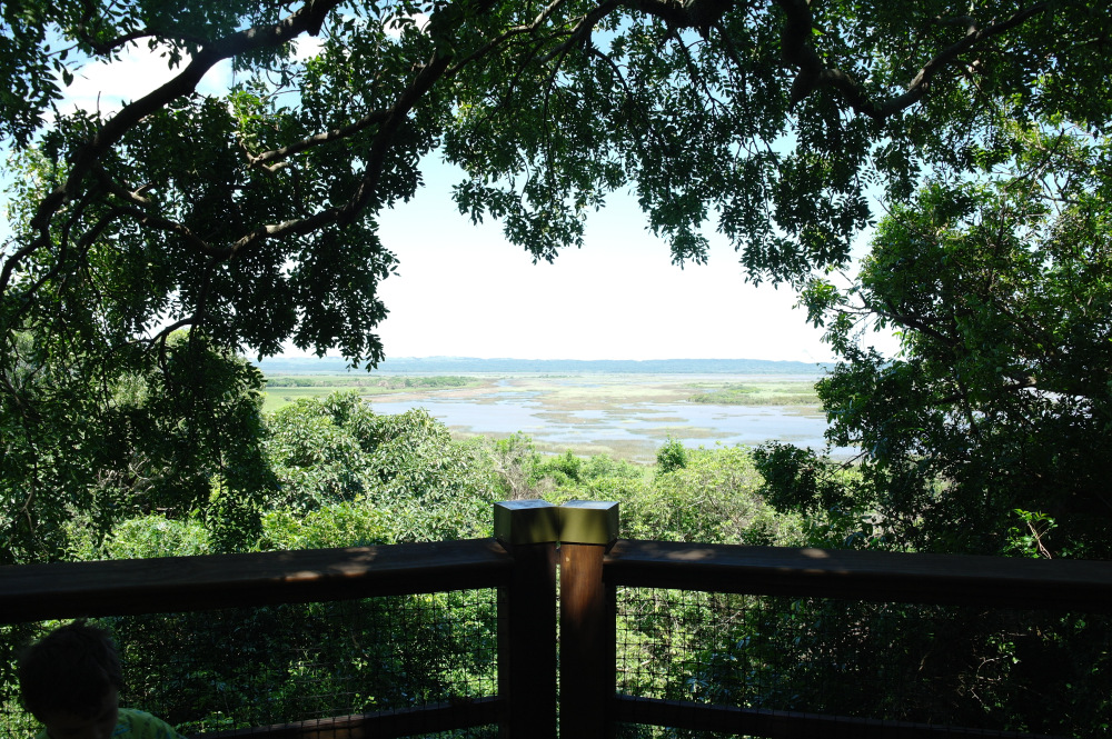 isimangaliso-western-shores-boardwalk
