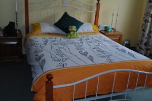Pillow slips and duvet