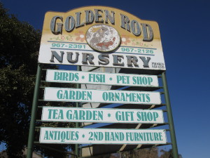 Golden Rod nursery sign