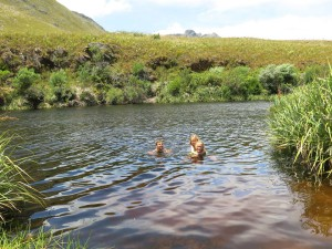 Swimming in the Palmiet river