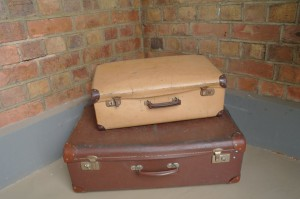 Winters Drift Suitcases