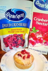 cranberry cupcake