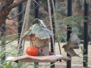 Pottery bird feeder