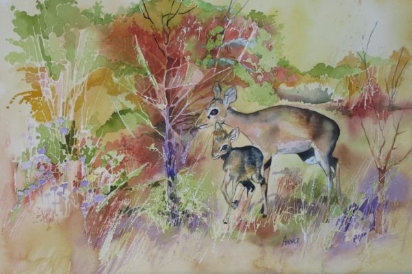 Antelope in the bush. Water colour painting 52 x 35 cm. Framed in a white contemporary frame. Price R1600